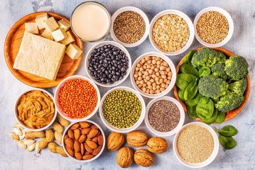 vegan weight loss diet plan